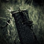 Fence by sombres-sky