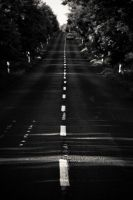 on the road by torobala
