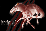 A2626 ES Indominus by NorthEast-Stables