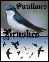 Swallows Photoshop Brushes by InConflict