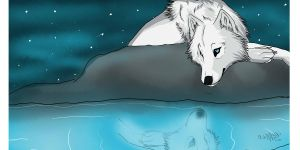 the white wolf by WolfWrathSpirit14
