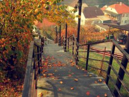 Autumn love by 2cool2care
