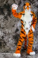 Lucky-Tiger Fursuit Photoshoot #11 by Mystic-Creatures