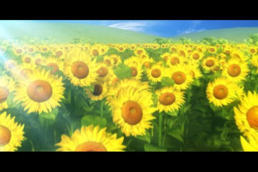 Sunflower Fields by owen-c