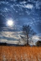 Silence I HDR by Logicalx