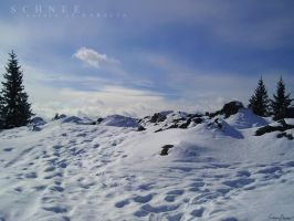 Snow paths by iricolor