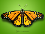 Butterfly - Free PSD by nelutuinfo