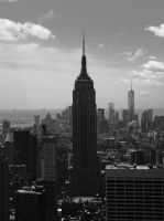 The Empire State by PicklesAndPigtails