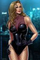 Black Canary by Salamandra88