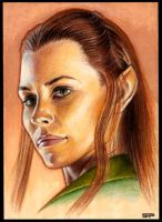 TAURIEL SKETCH CARD by S-von-P