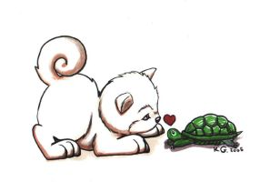 Turtle Luv by diefenbaker