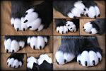 Black and white sockpaws - CMSH by DexterousZombie