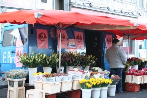 flowers at market la batte Liege 3 by ingeline-art