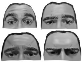 A20 - My Expressive Brows by Rhyrs