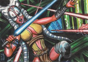 SHAAK TI SKETCH CARD by AHochrein2010