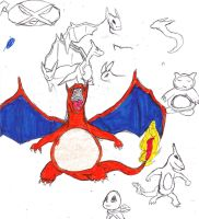 Charizard sketches by Dreballin3x