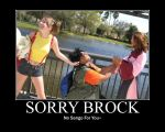 Sorry Brock Mod Poster by PuddingElric