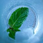 Ice Mint by SunSunich