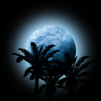 Moon with palm trees silhouette by Viktoria-Lyn