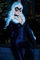Felicia Hardy - Black Cat by diacita
