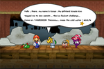Paper Mario TTYD Ice Bucket Challange by DarkraDx