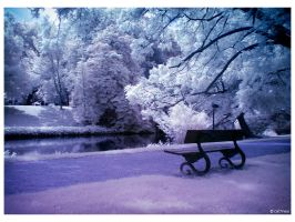 Contemplation IR by caithness155