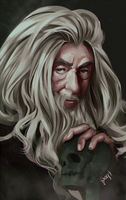Gandalf the dark grey by ERDJIE