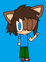 Chris the Hedgehog *Gift/Request by InsaneVaporeon