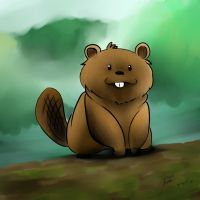 Oh- look a Beaver by dcrisisbeta
