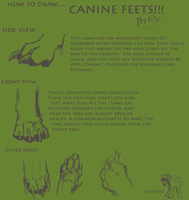 Canine Paw Tutorial by RiverWolf1o413
