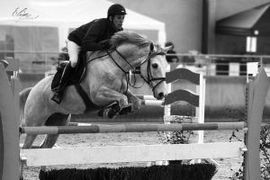 Equestrian competition by EliseJ-Photographie
