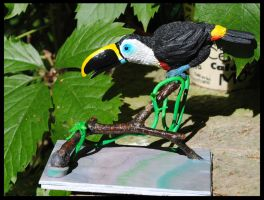 Channel-billed Toucan by ApostacyArt