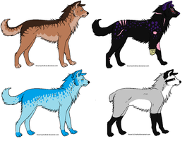 Name Your Price Adoptables by spiritofthewolve