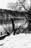 Winter Waterscape by NickField