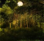 Harvest Moon by rsiphotography
