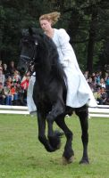 Ladies On Friesians 10 by ponystock