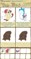 PMD-E_Blue Miracle Team_ by SapphireMiuJewel