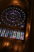 Inside Notre Dame by iscott