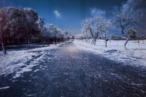 the Road not taken by faisalh