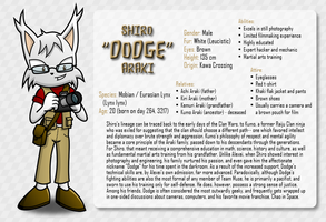 Character Info Sheet: Dodge by CheVD