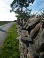 Rural Wall by alanhay