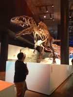My time at the Houston museum by Joel-Cevallos