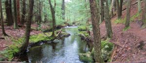 Bear Brook River (1) by wagn18