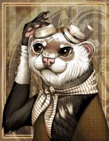 Steam Ferret by Sylfaenn