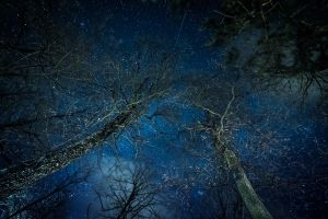 stars are mysterious by JPGphotos