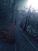 long forest path stock by Jrennie1984-stock