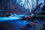 Pindrops by excess1ve