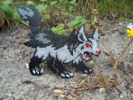 Mightyena with Hama Beads by KimiMonsterKitty
