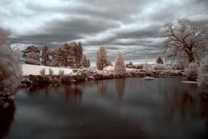 Pond Infrared by Cravero
