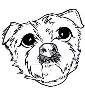 dog caricature 043013 by raccoon-eyes